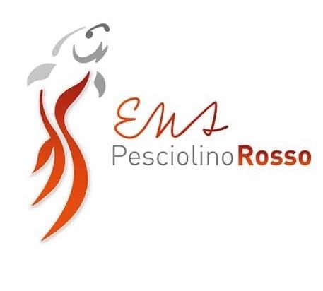 Risorse Digitali PesciolinoRosso