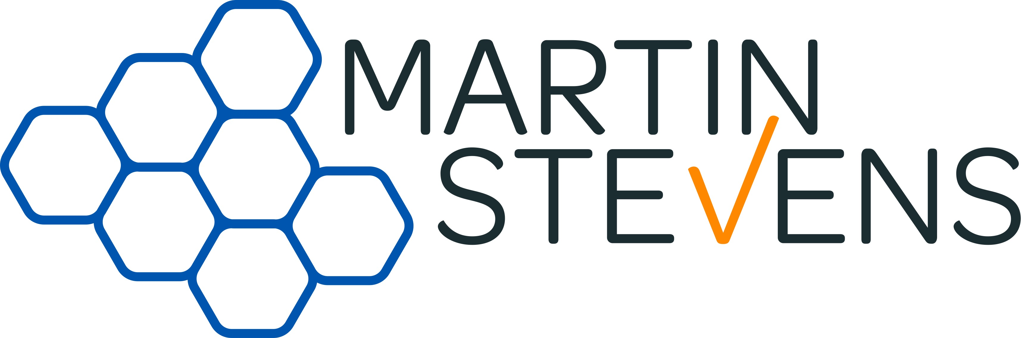 Martin Stevens Project Services Limited
