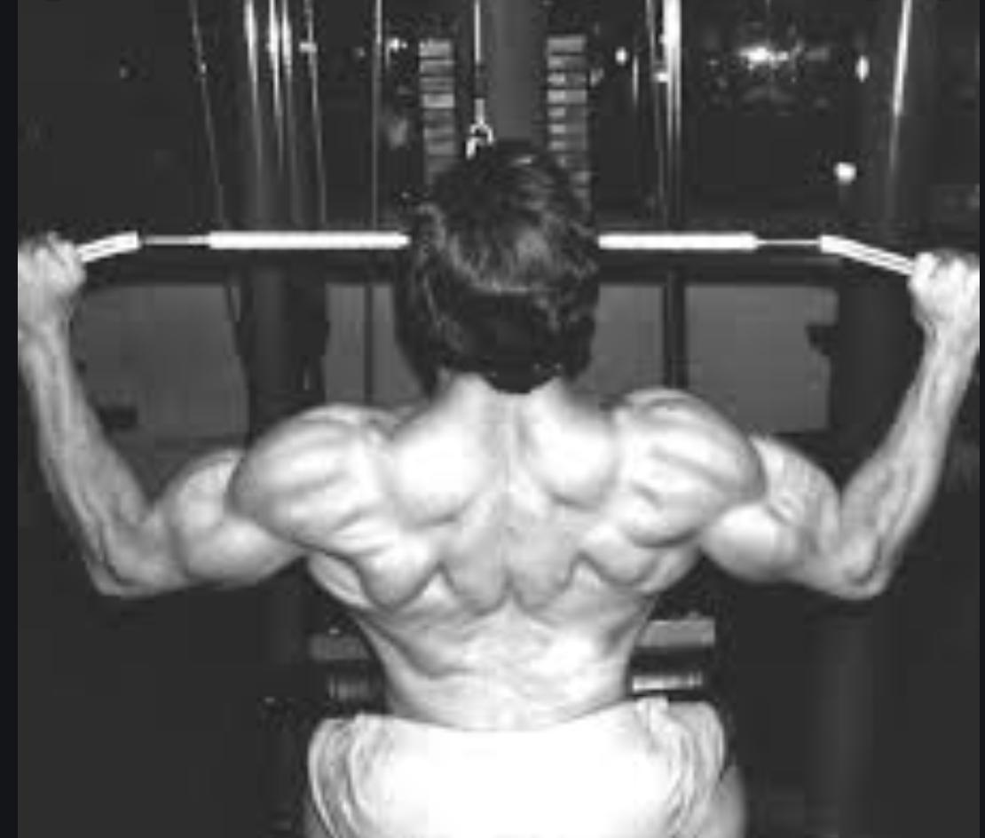 Vicsnatural Workouts