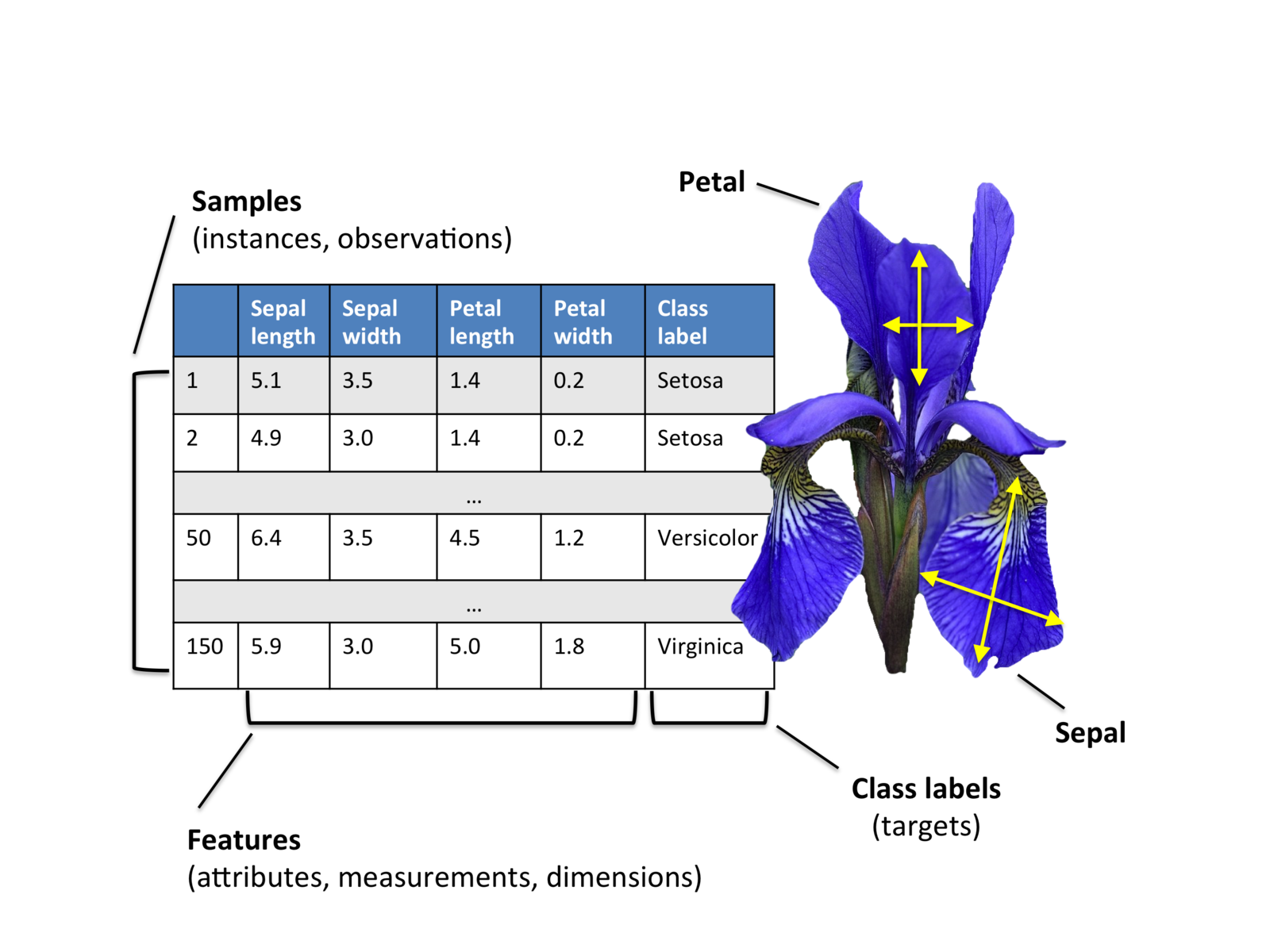 Applied Machine Learning using R - Classification with IRIS