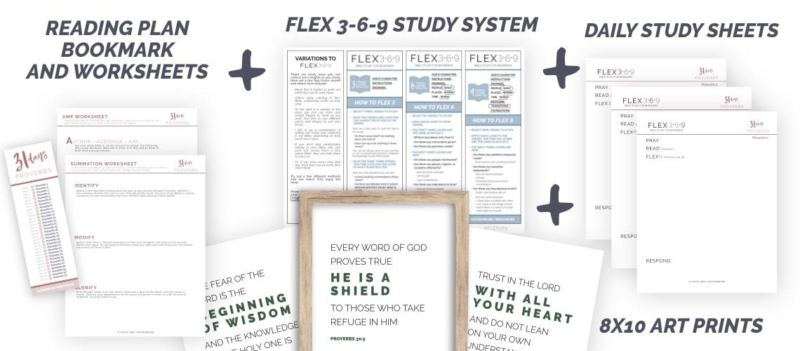 Proverbs Study Pack